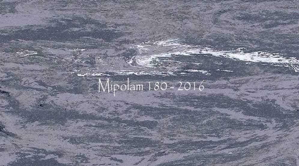 Mipolam 180 - 2016