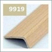 Step Nosing 9919