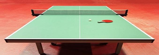 Gerflor Taraflex Untuk Tenis Meja